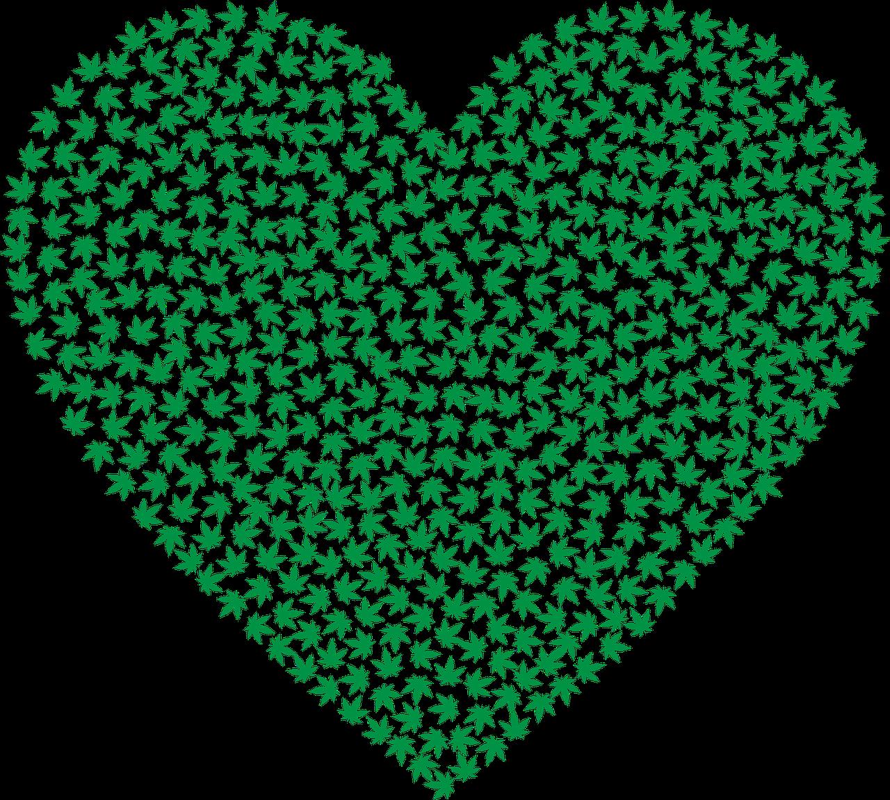 hemp heart